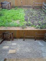 A photo of my garden