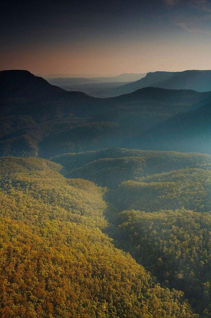 Blue Mountain Haze