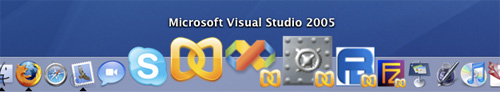 Visual Studio 2005 on a Mac