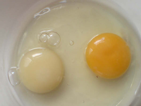 White Egg Yolk