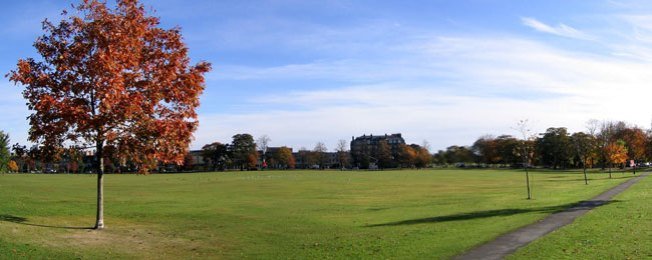 Panoramic Park