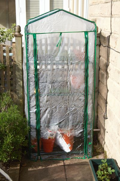 Our Mini Greenhouse