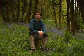 An Idiot Sat On A Rock In A Sea Of Bluebells
