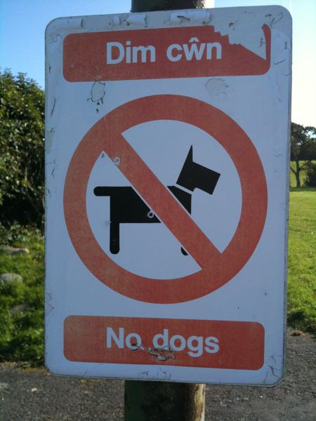 Welsh No Dogs Sign