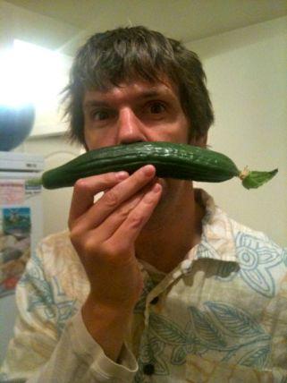 My Cucumber Tache