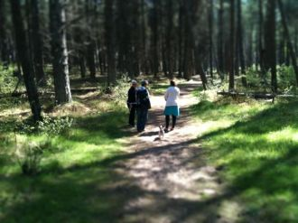 Tentsmuir Forest Paths