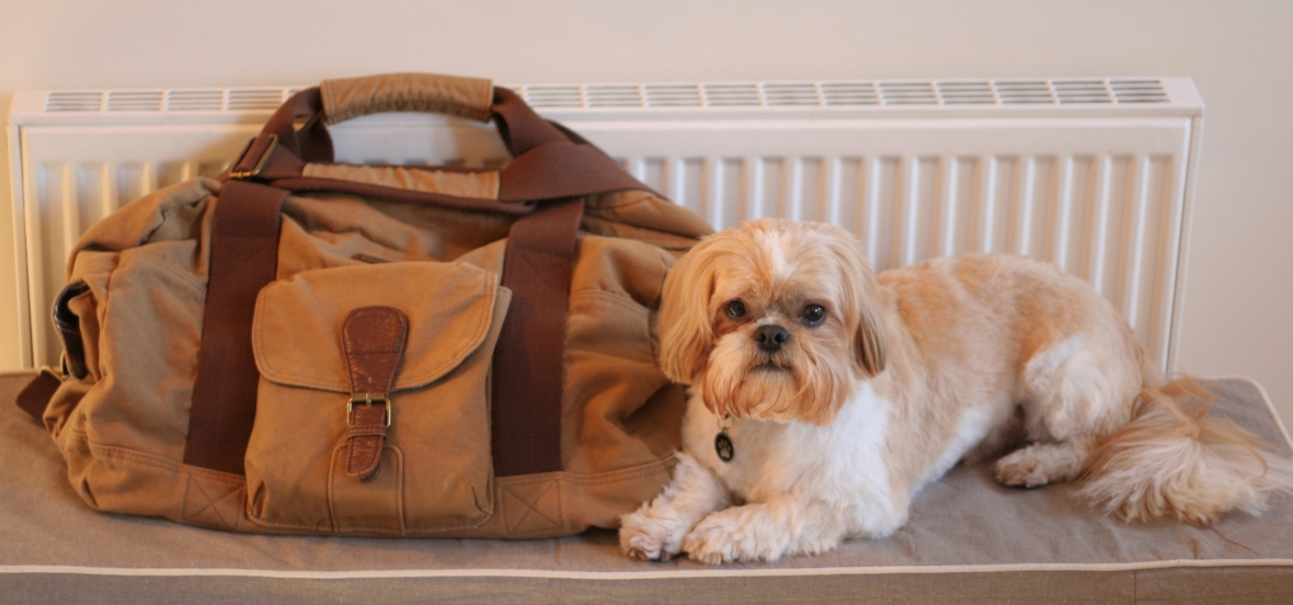 My Hopton Overnight Bag And Billy