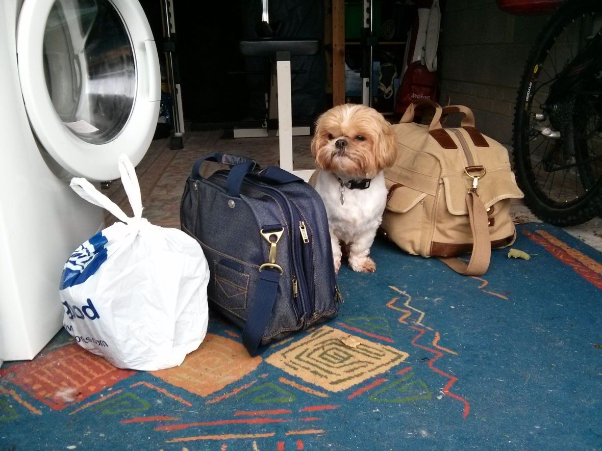 Billy Making Sure He Isn't Left At Home