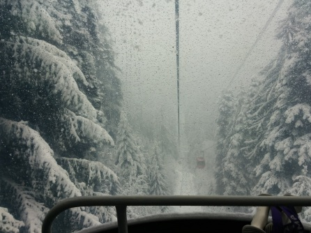 From The Gondola