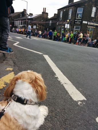 Billy waiting for the bikers