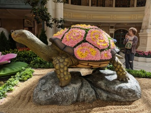Some flower show in Vegas